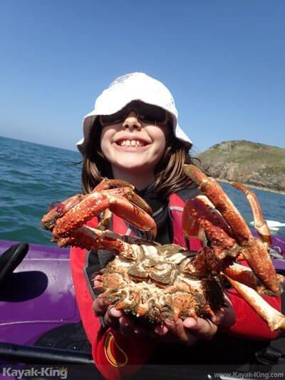 Pembrokeshire Marine life Spider-crab-selfie